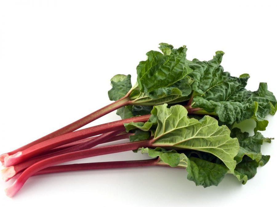 The+Rhubarb%3A+All+the+JBS+News+You%E2%80%99ll+Ever+Eat